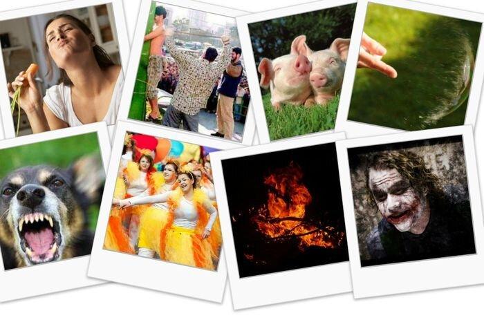 12 примеров ономатопей со всего мира (12 фото+текст)