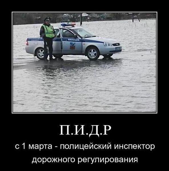 Инспектор ДПС с 1 марта будет именоваться - П.И.Д.Р. (3 фото)
