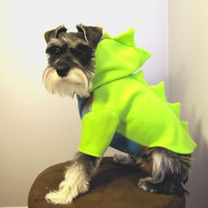 Dino Doggies! Dressing Cute Dogs Like Dinosaurs  от Kaye за 18 sep 2012