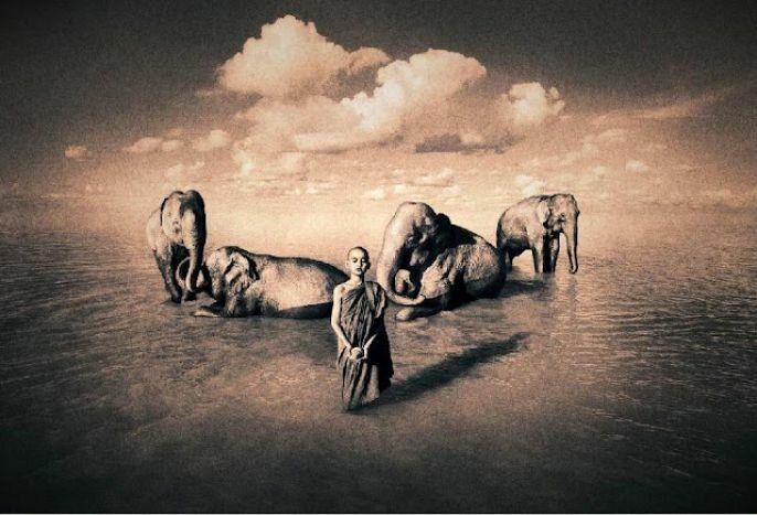 Gregory Colbert: Ashes and Snow, Beautiful Photography