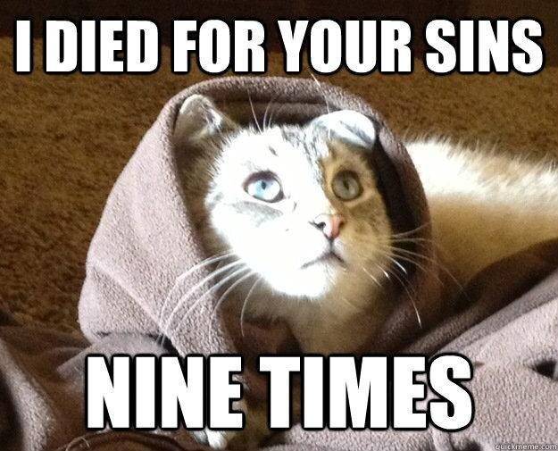 Best of the Kitty Jesus Meme