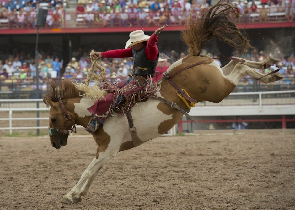 Photographing the world's largest outdoor rodeo