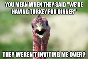 Hilarious Thanksgiving Demotivators