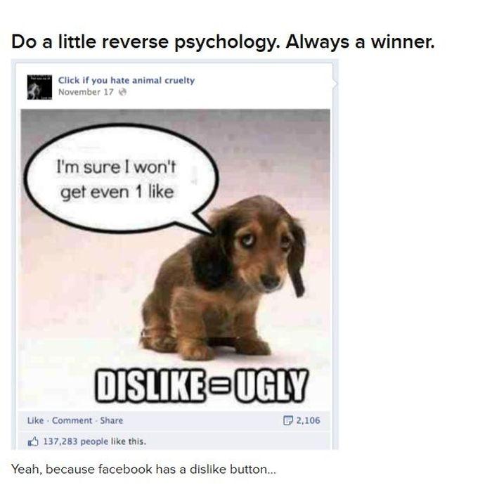 Stupid Facebook Posts  от Helen за 28 nov 2012