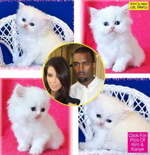 RIP Mercy Kardashian :(