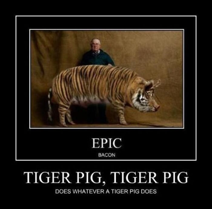 Demotivators Picdump  от Helen за 14 dec 2012