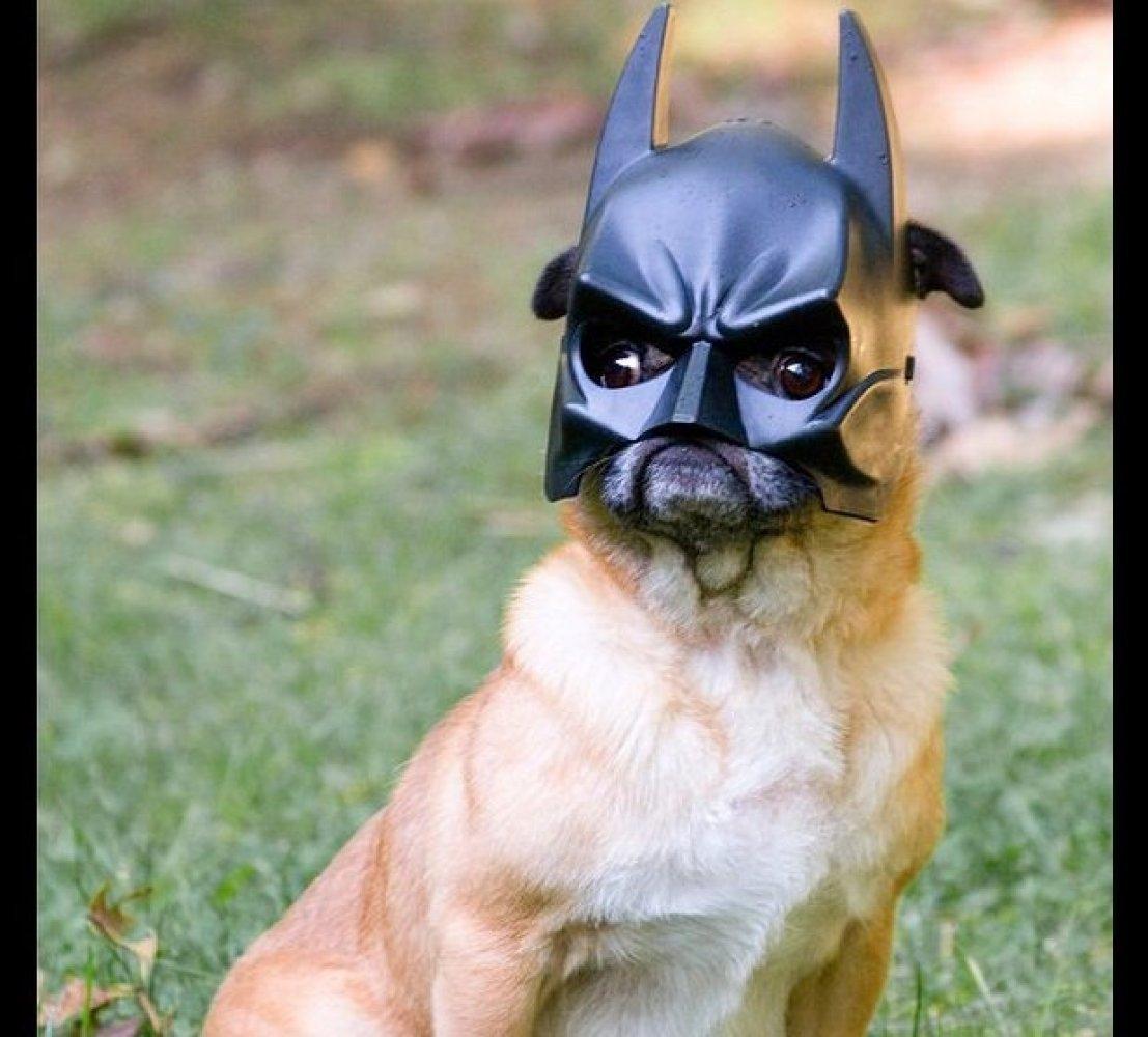Bada, bada, bada, bada, BATMAN!
