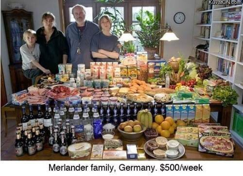 What the average family spends on food every week
