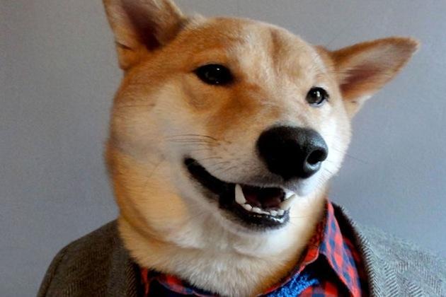 'Menswear Dog': Flyest Tumblr in town.