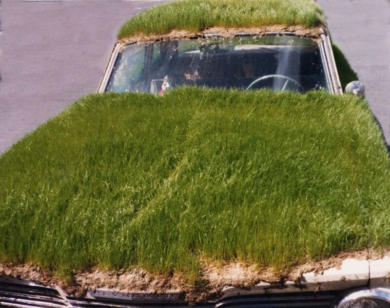 What's Up With These Grass-Covered Cars?!