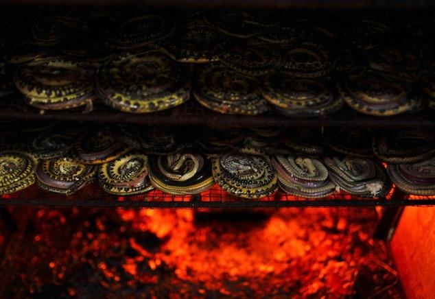 How Snakeskin Handbags Are Made