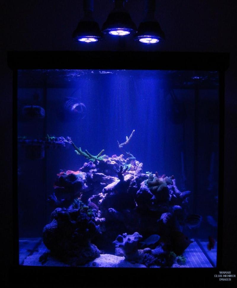 Awesome LED Uses!