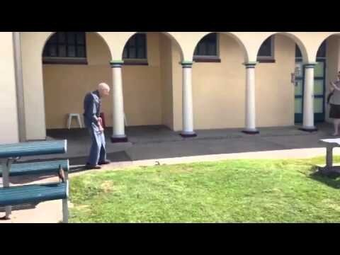 Old Man Gives No F*cks, He Kicks a Venomous Brownsnake In The Face