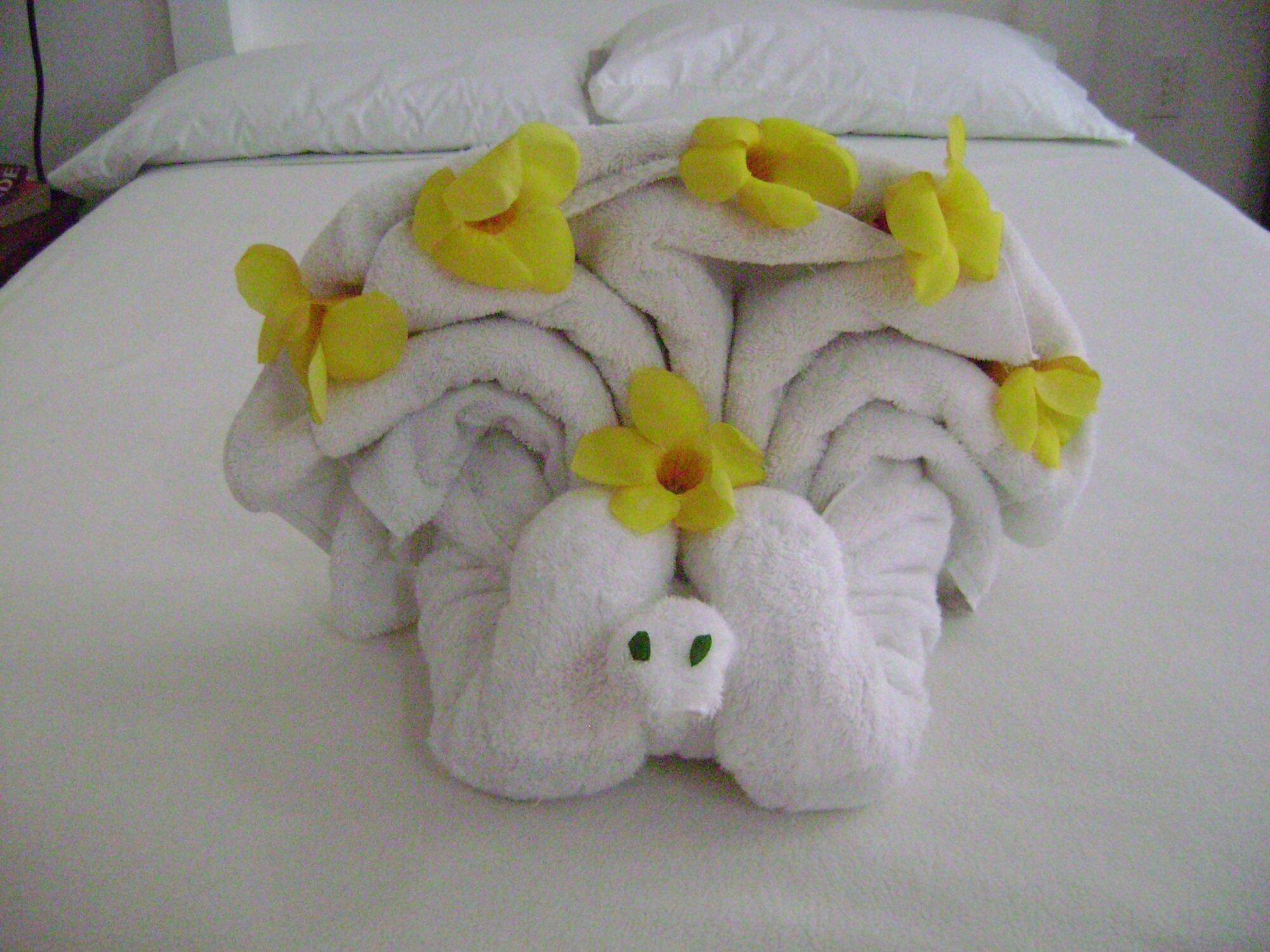 Odd Towel Origami.