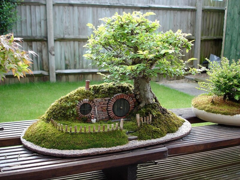 A Bonsai Bilbo Baggins Hobbit Home By Chris Guise