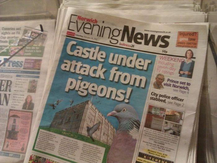 Shocking Funny Local News Headlines
