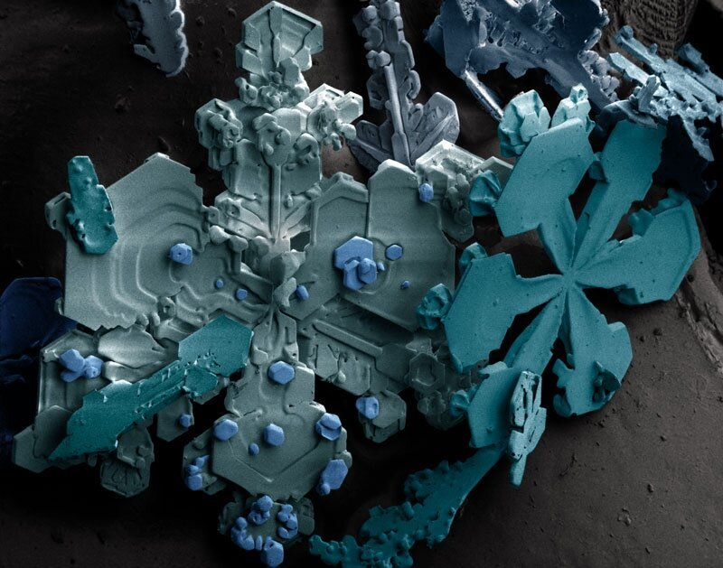 Microscopic Images of Snow Crystals