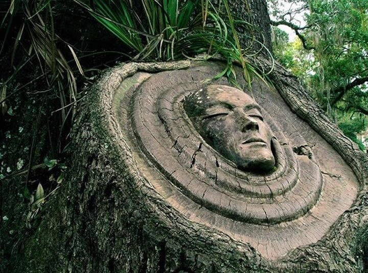 Sculptor Keith Jennings Releases Mysterious Spirits In Trees