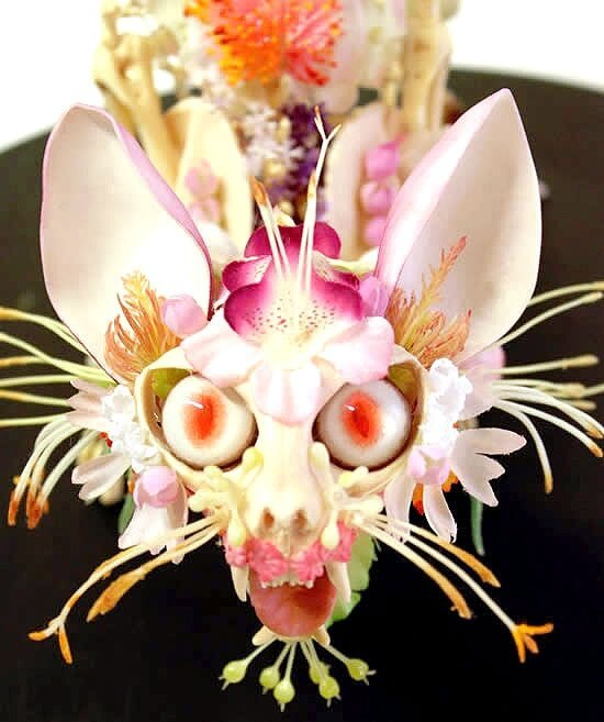 Terrifying Flower Encrusted Skeletons, Taxidermy By Cedric Laquieze