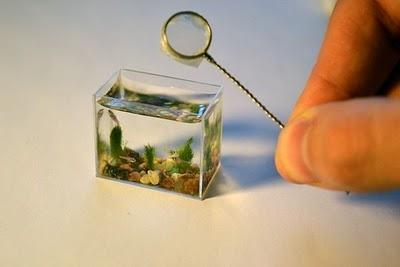 World Smallest Aquarium By Anatoly Konenko Miniature