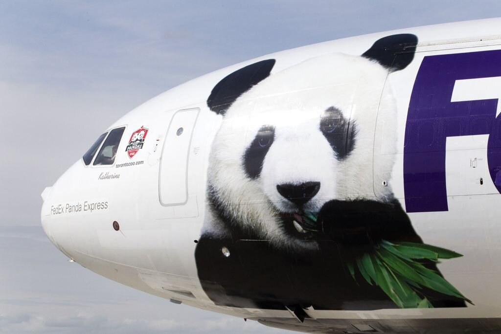 Giant Pandas Arrive In Canada On 10 Year Loan From China