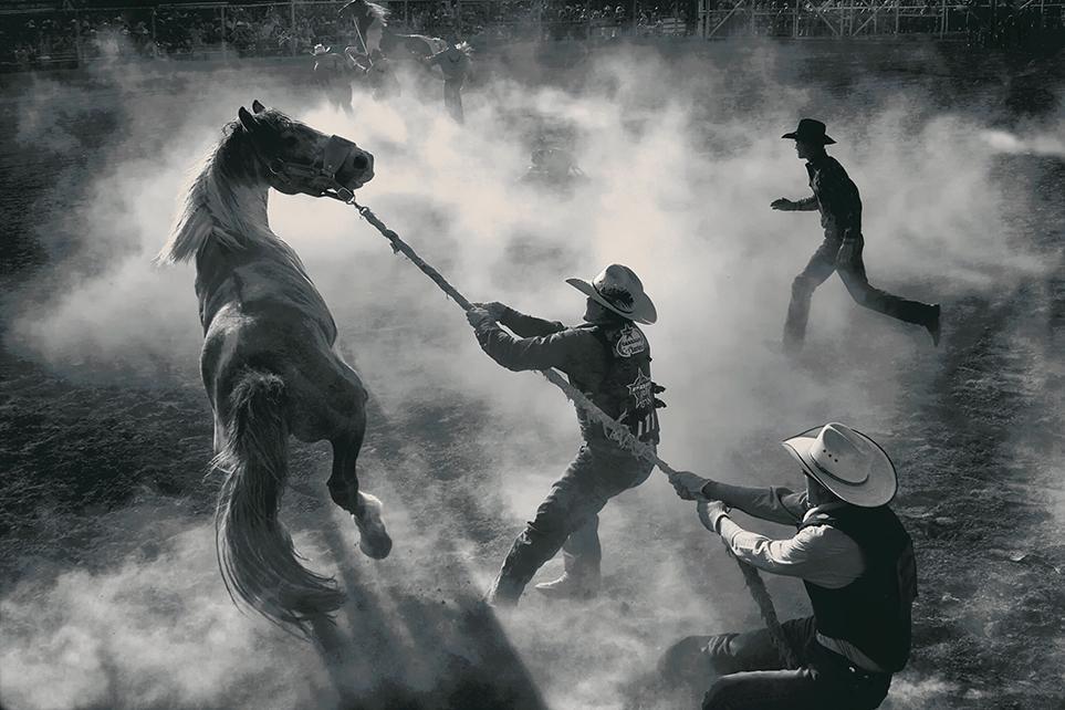 Smithsonian Photo Awards