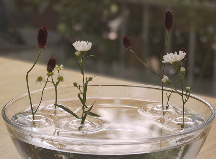 Amazing Illusions of Single Flowers Defying Gravity