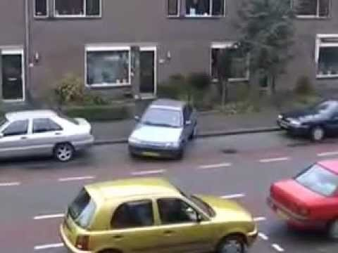 Stupid Woman Tries Parking Her Car