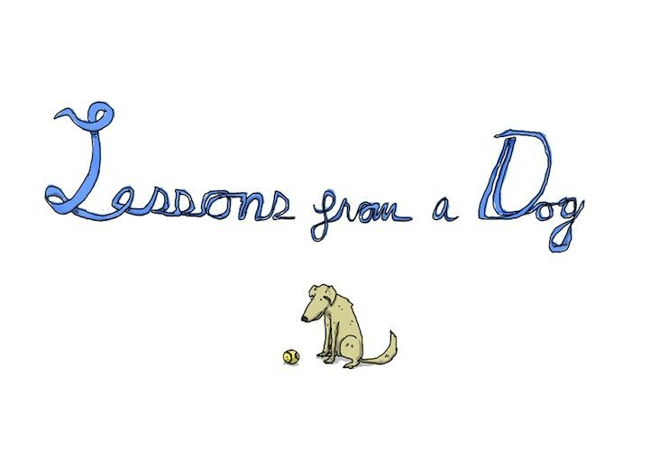 Seven Illustrated Lessons We Can All Learn From a Dog