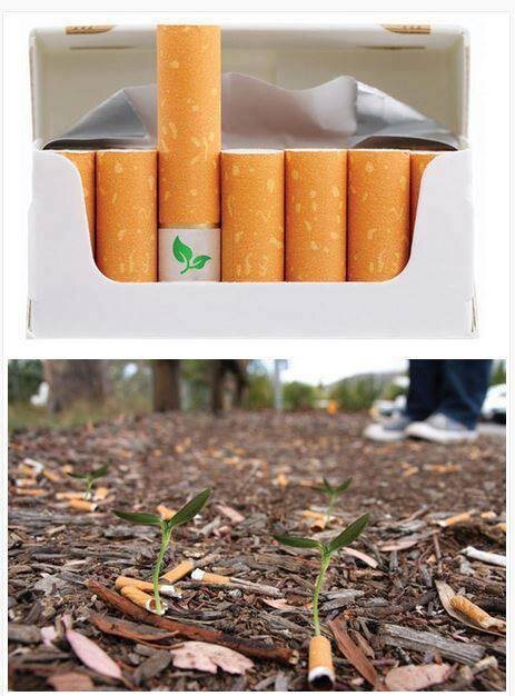 Biodegradable Cigarette Butts That Grow Into Flowers... Smoked a cigar