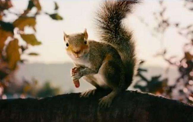 Timur Bekmambetov's 'Squirrels' Trailer Looks Ridiculous