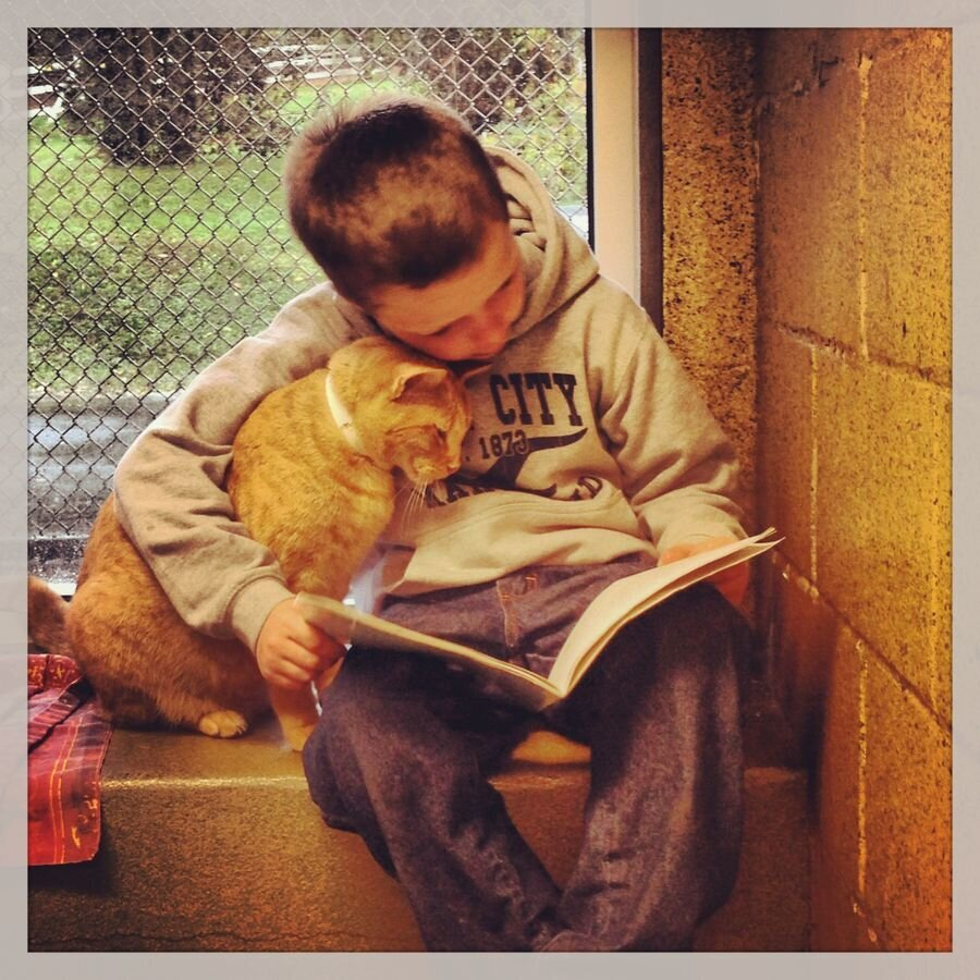 Kids who read for cats