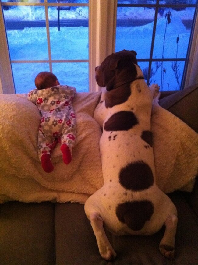 Cute photos of children and dogs