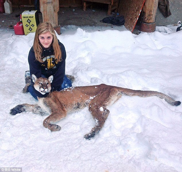 How girl ELEVEN shot dead cougar that was stalking her brother