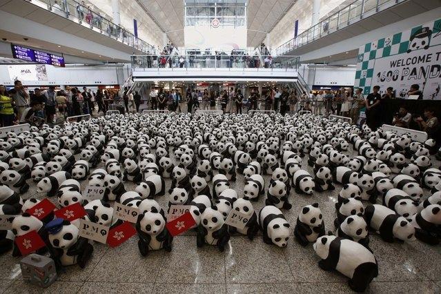1,600 Papier Mache Pandas Reach Hong Kong