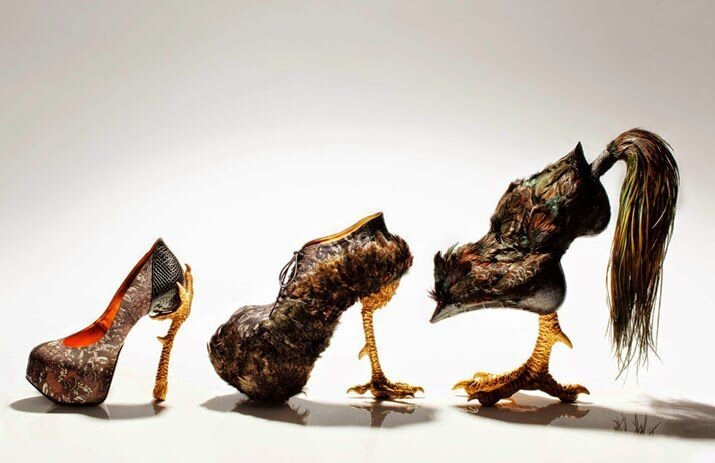 Amazing Shoes by Masaya Kushino
