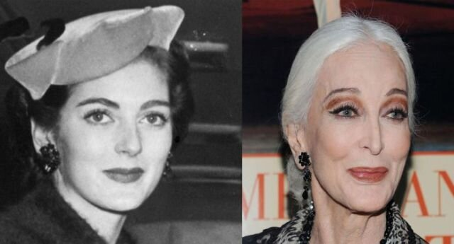 Photos of Hollywood Leading Ladies Today and from the Past