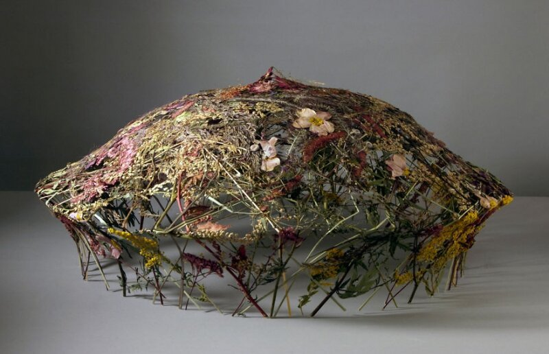Spanish Artist Creates Delicate Pressed Flower Sculptures
