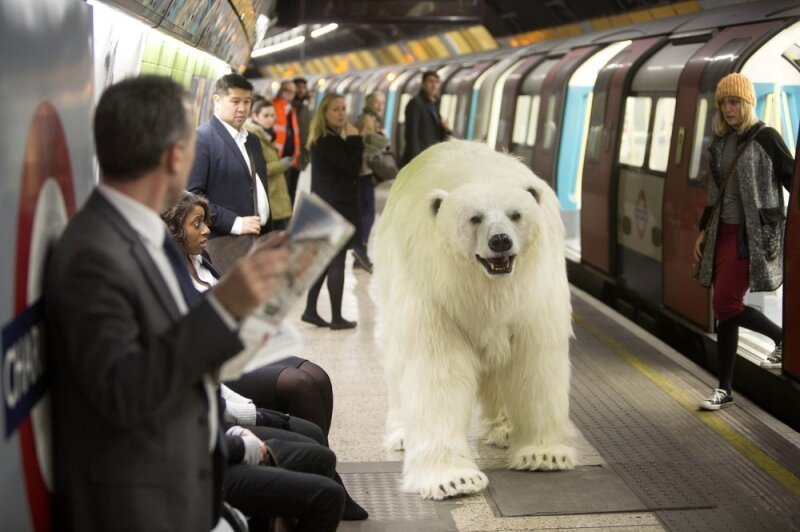 An Animatronic Polar Bear Visits the London Underground