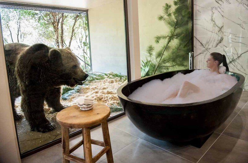 A new hotel in Australia lets you dine with lions and take a bath next
