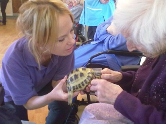 We Bring Giant Snails, Lizards, And Owls To Retirement Homes