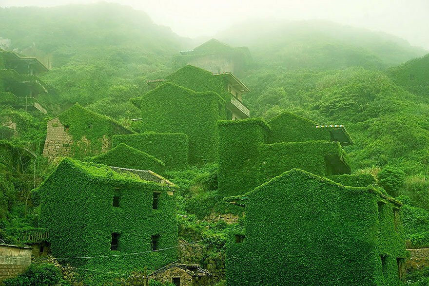 Abandoned Chinese Fishing Village Being Swallowed By Nature