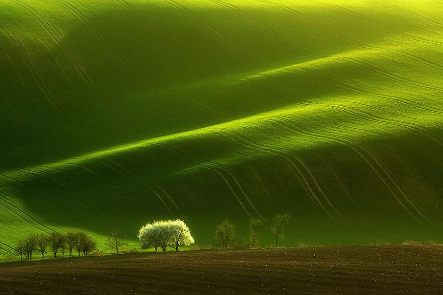Hypnotizing Beauty Of Moravian Fields In The Chech Republic
