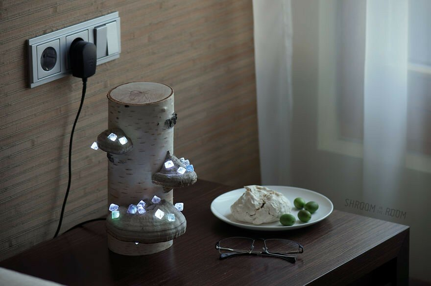 We Create Night Lamps Out Of Hand-Picked Crystals, Fallen Timber And Tree Mushrooms