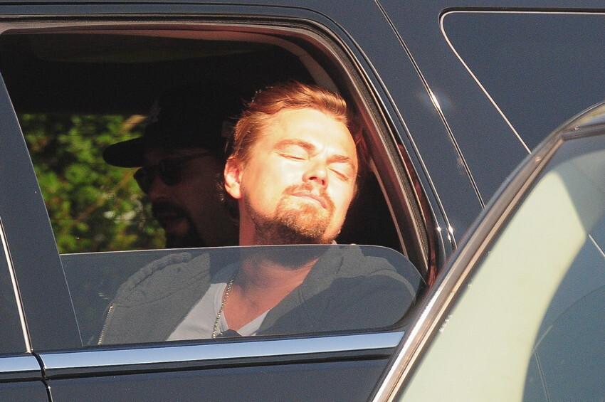 17 Times Leonardo DiCaprio Out-Leo DiCaprio'd Himself