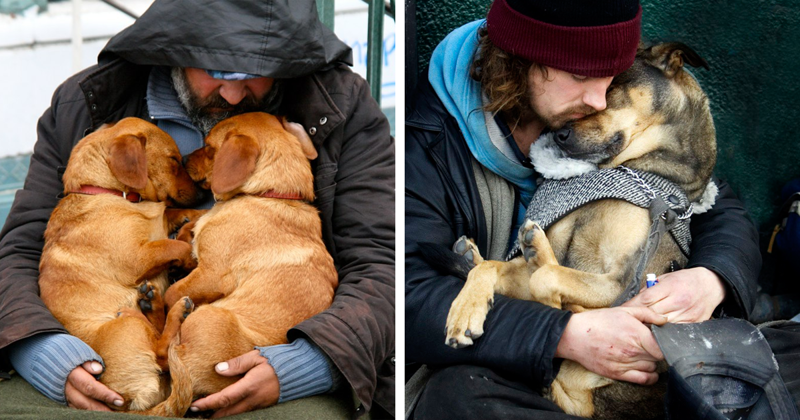 15+ Photos That Prove Dogs Love You No Matter How Much Money You Don't Have