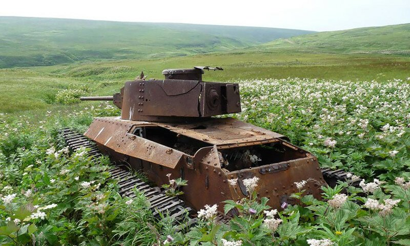 Tanks Swallowed By Nature Look So Peaceful As If The War Never Happened