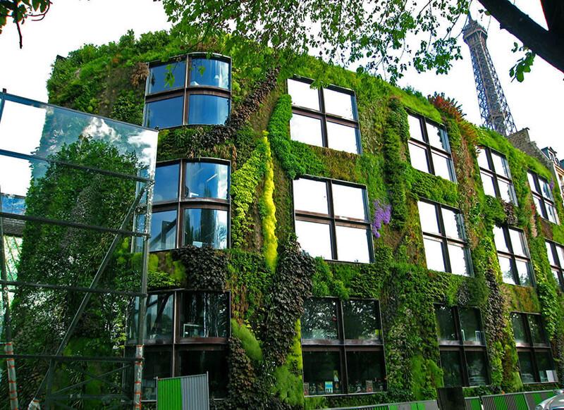 Paris' New Law Allows Anyone To Plant Urban Gardens