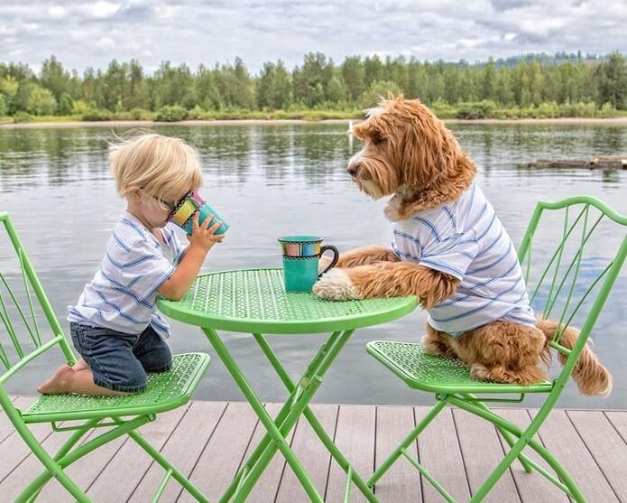 Heartwarming Friendship Between Boy And His Dog