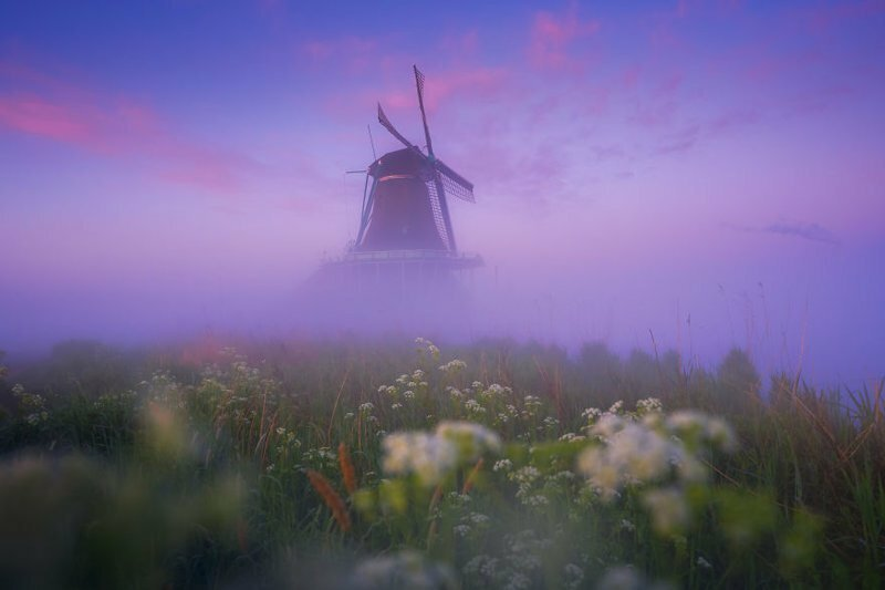 I Photographed Dutch Windmills In The Fog And The Results Are Magical